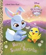 <h5>Berry's Sweet Surprise (2016)</h5><p>Palace Pets: Whisker Haven Tales; Disney; TV</p>